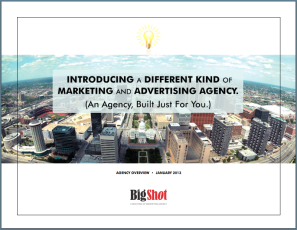 Send me an overview of Big Shot Agency.